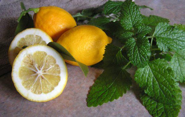 Immer sauer – basisches Essen und Getränke
